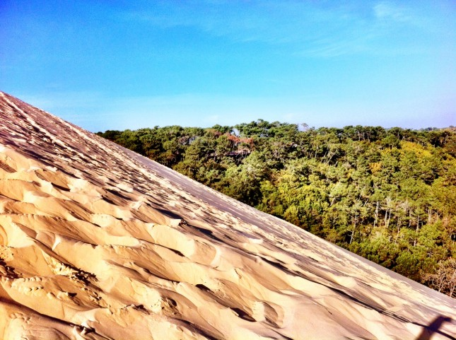 The Climb up the Lee Slope of the Dune, Way Above the Trees