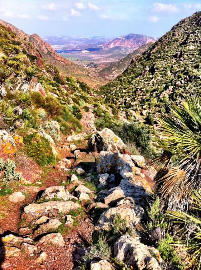 The Cerro Cuchillo valley in the Cabo de Gata, lush with flora and a very rocky path!