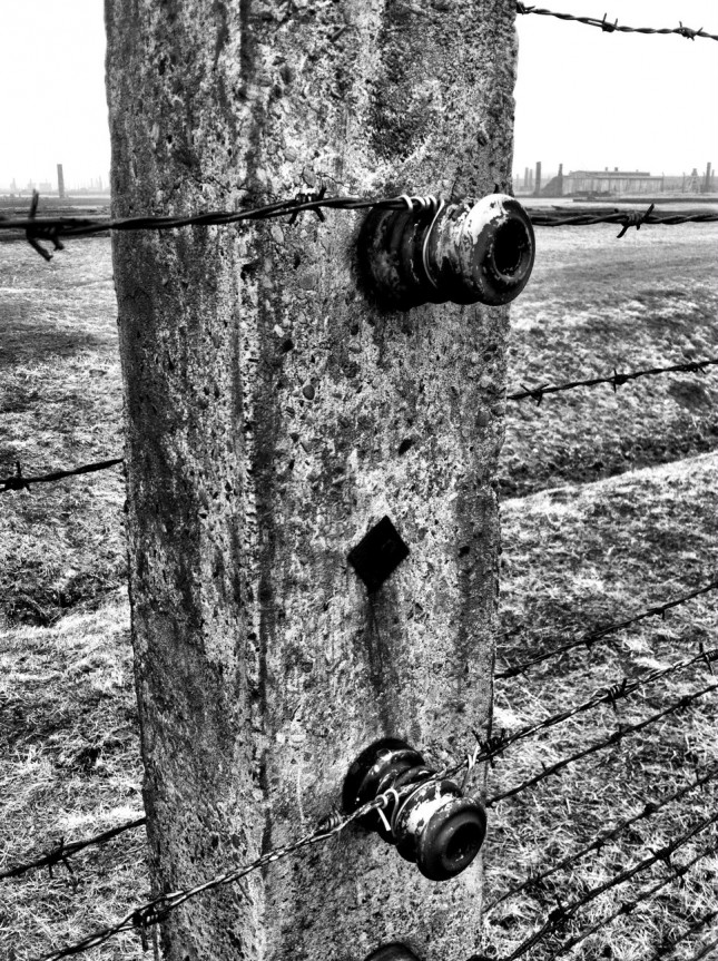 Concrete fence posts with ceramic electrical isolators at Auschwitz II-Birkenau