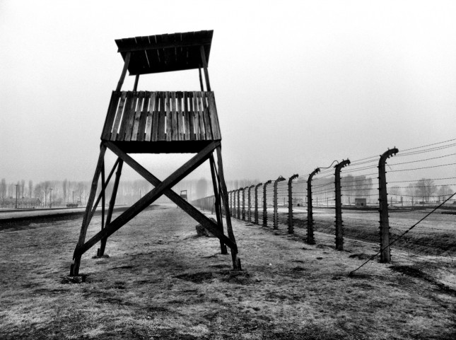 A guards watchtower looks out over the bleak landscape of former prisoner huts at Auschwitz II-Birkenau
