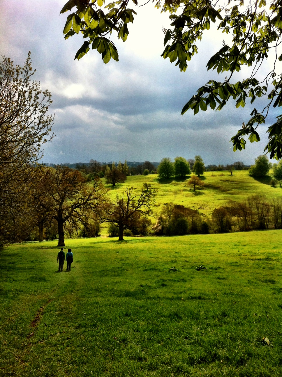 Walking in the Cotswolds