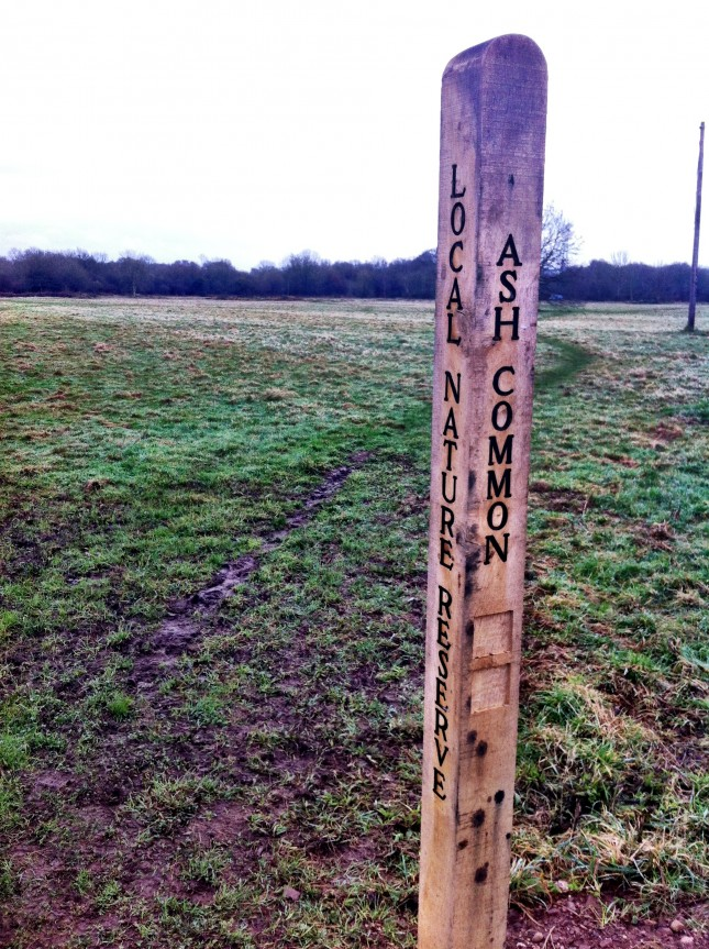 Marker Post on Ash Common