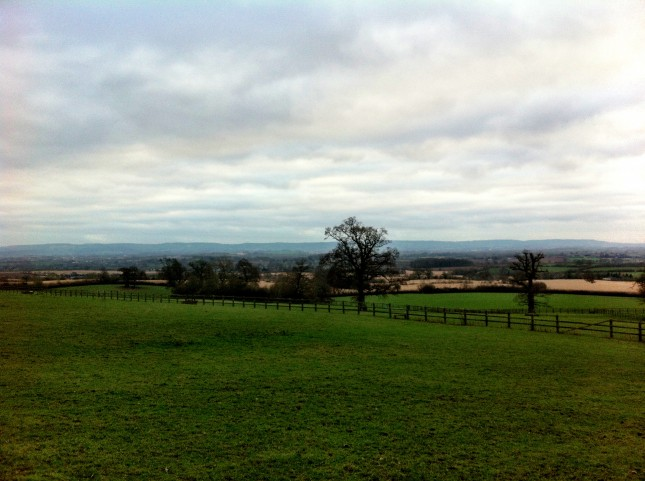 Far Reaching Views Across Taunton Vale