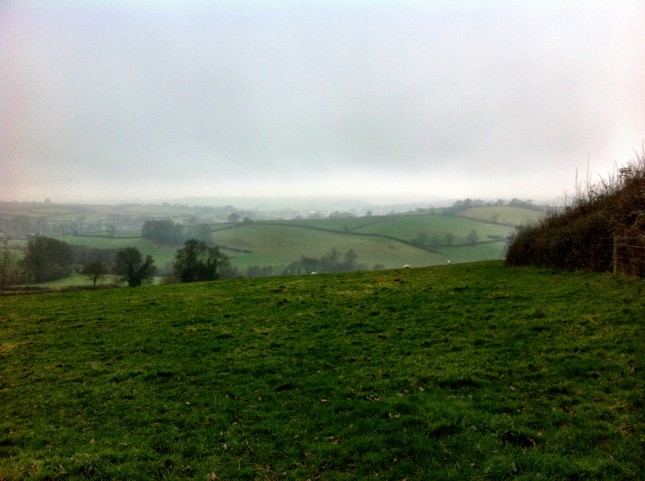 Views of Maundown and Wiveliscombe Across the Fields