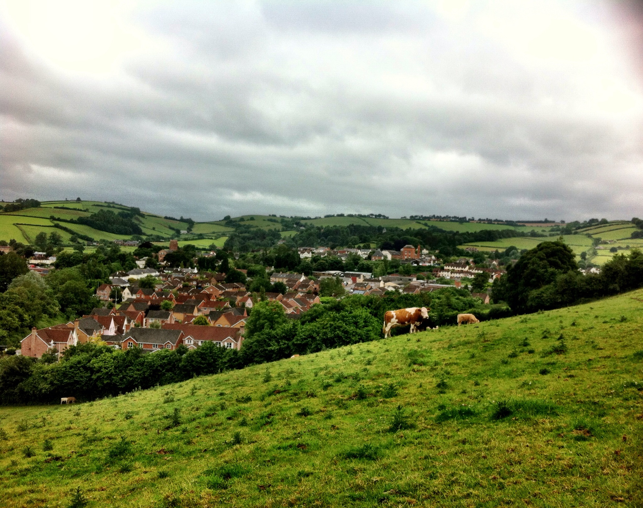 Walking Into Wiveliscombe