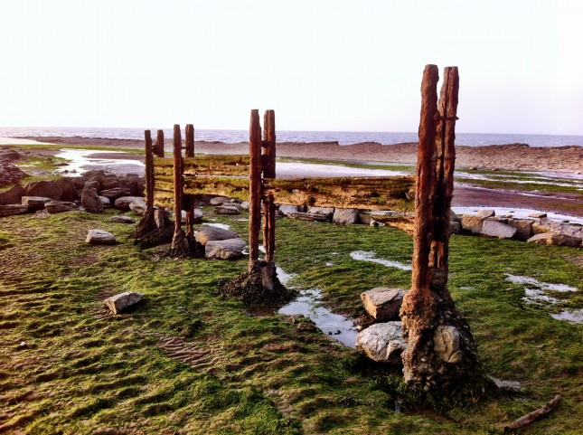 Groynes, or mooring posts, or something else