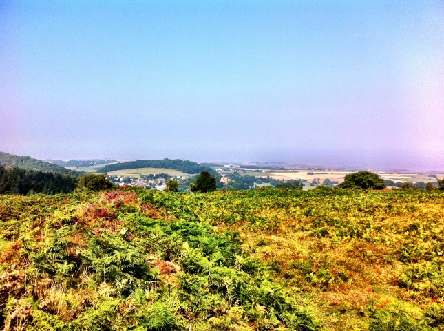 The view from Bat's Castle towards Dunster Castle and Dunster Beach