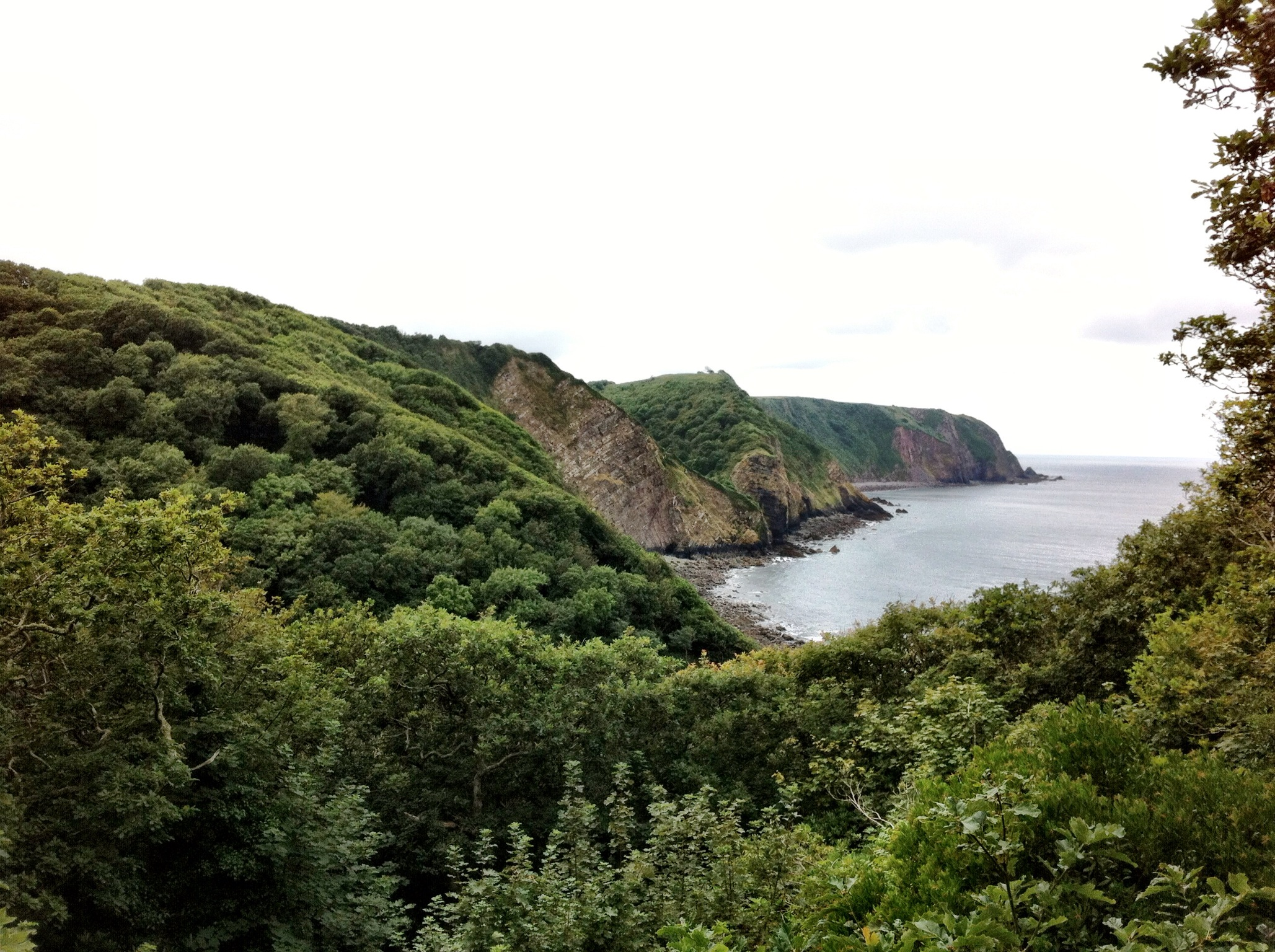 SWCP – Buck's Mills to Hartland Point