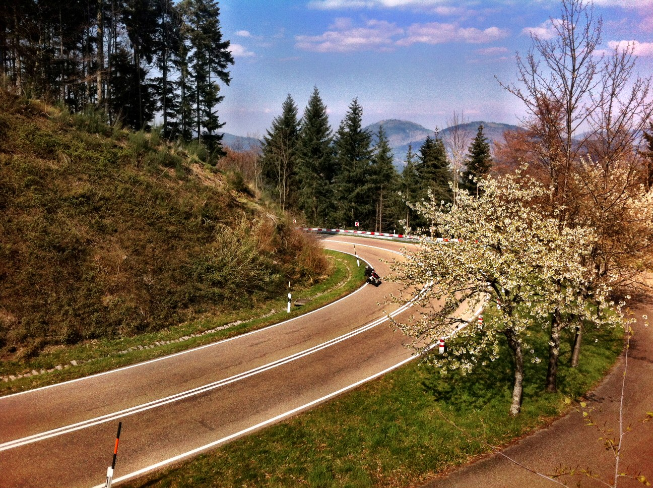 The Black Forest and the Schwarzwald Hockstrasse