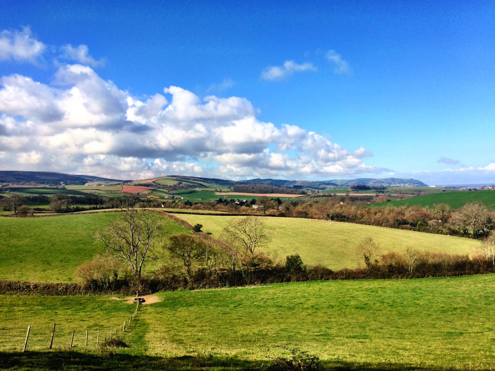 Somerset Shines