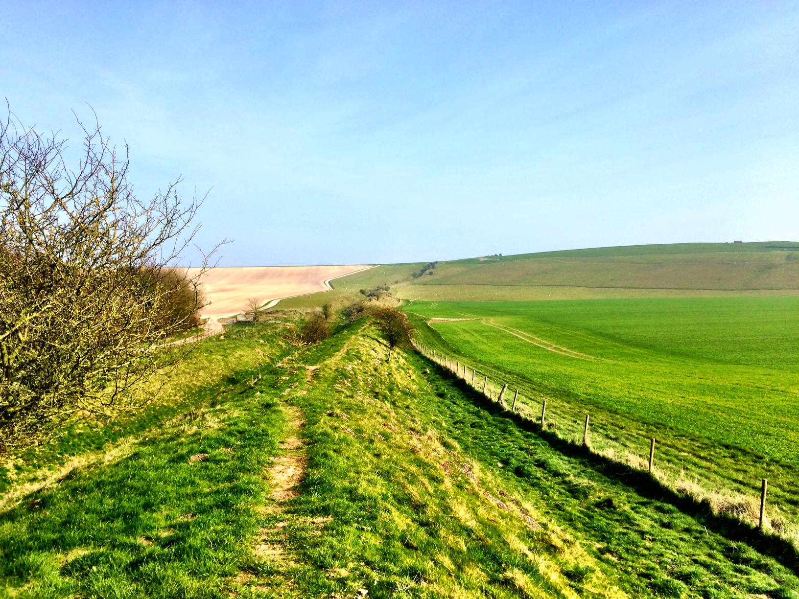 Wansdyke & the Alton Barnes White Horse